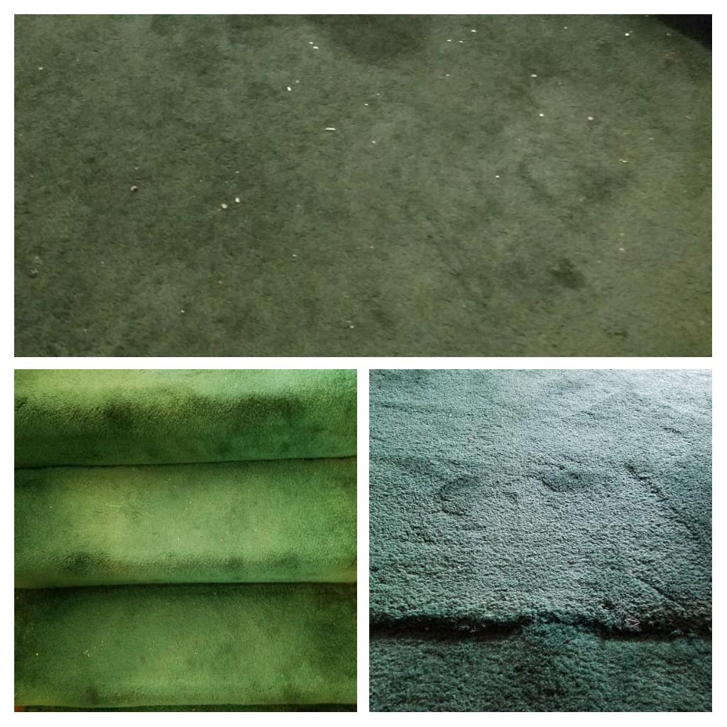 Did you know evergreen carpet was a thing? ugly floor contest entry photo