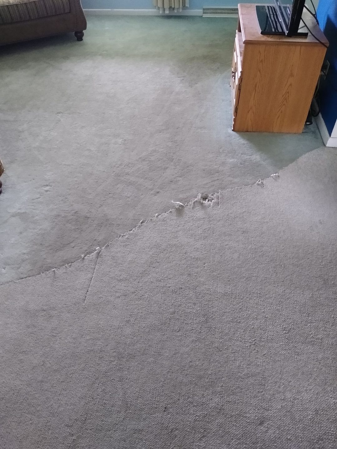 The wavy frayed carpet ugly floor contest entry photo