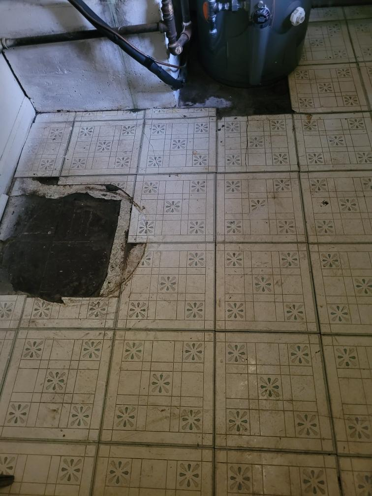 It's real bad ugly floor contest entry photo